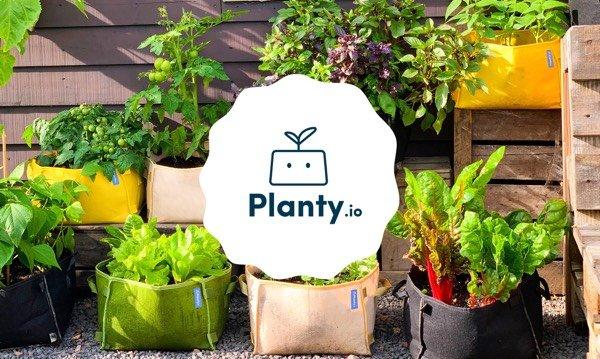 Planty.io: de Makkelijke Moestuin mini voor de hele wereld