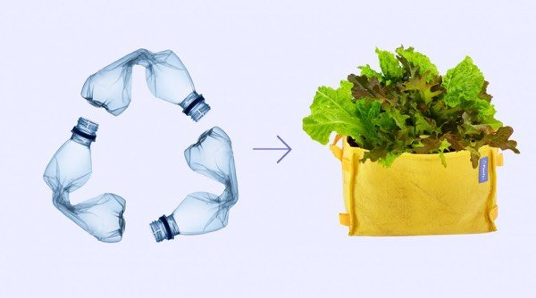 Makkelijke Moestuin Mini's worden gemaakt van plastic flesjes