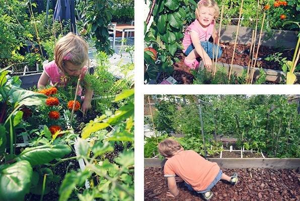 Kinderen aan het werk in hun makkelijke moestuin