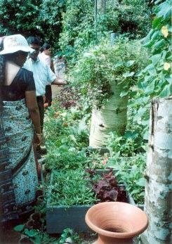Vrouwen in Sri Lanka