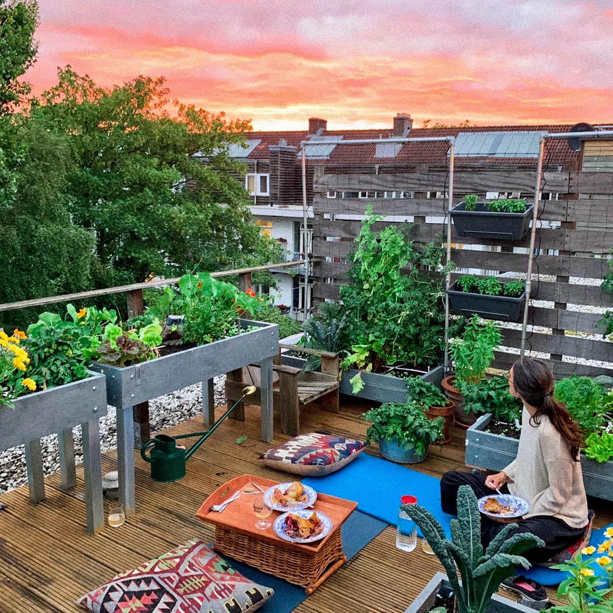 Makkelijke Moestuin op het balkon van Xanadu in Amsterdam