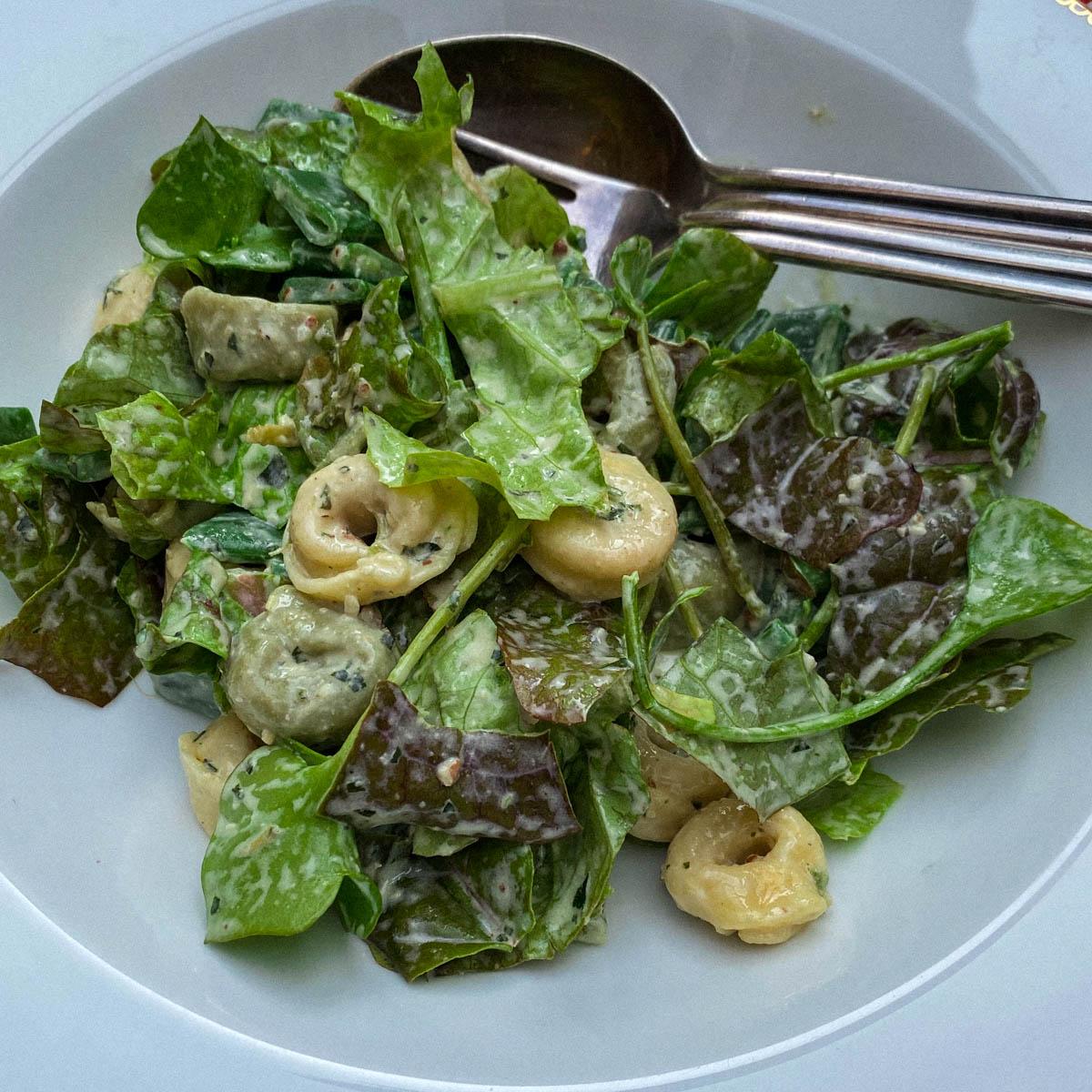 Tortellini salade met vers-geplukte groentes