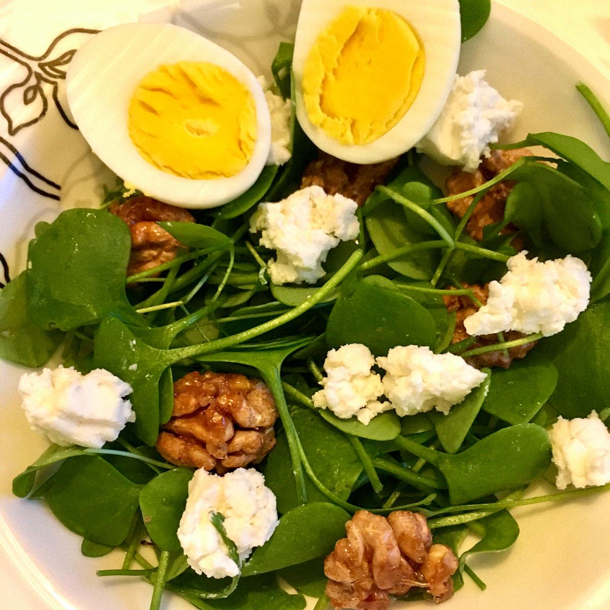 Salade met winterpostelein uit de Makkelijke Moestuin