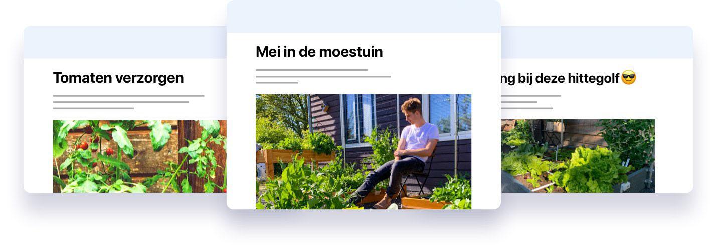 mmailheader_mobile2.jpg