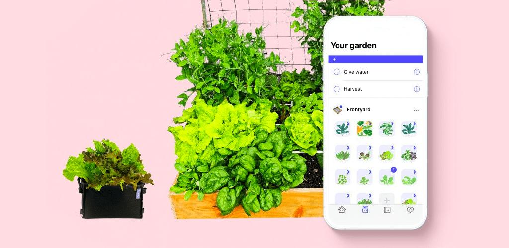 planty-app.png