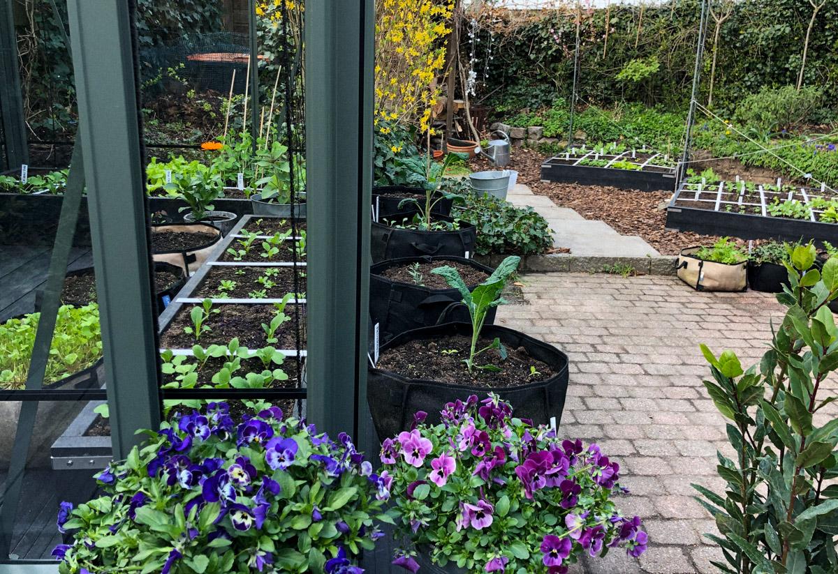 Tuinkas maakt de Makkelijke Moestuin van Plien compleet