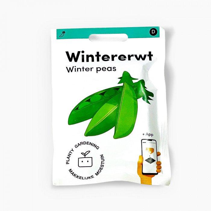 Wintererwt