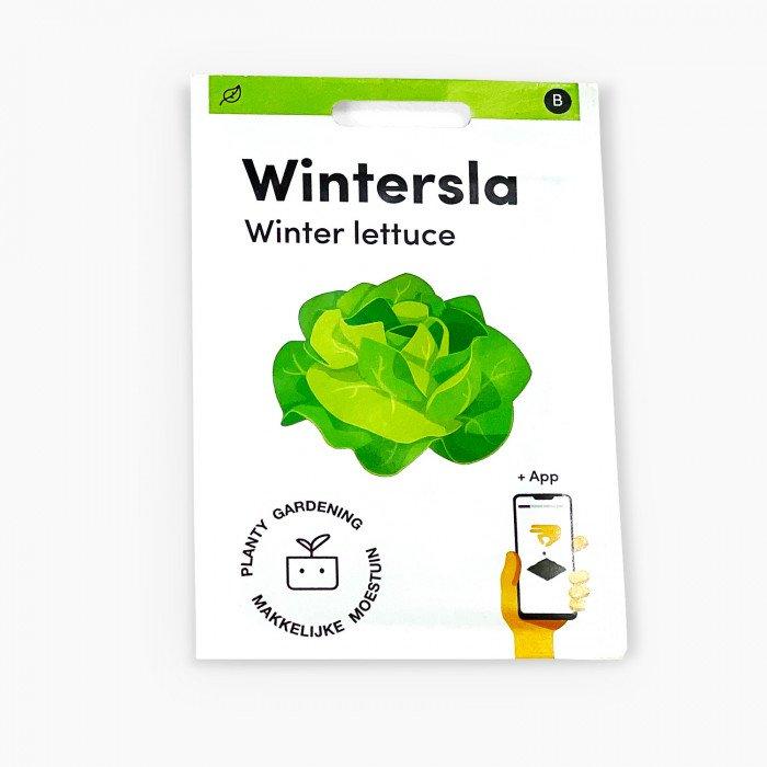 Wintersla