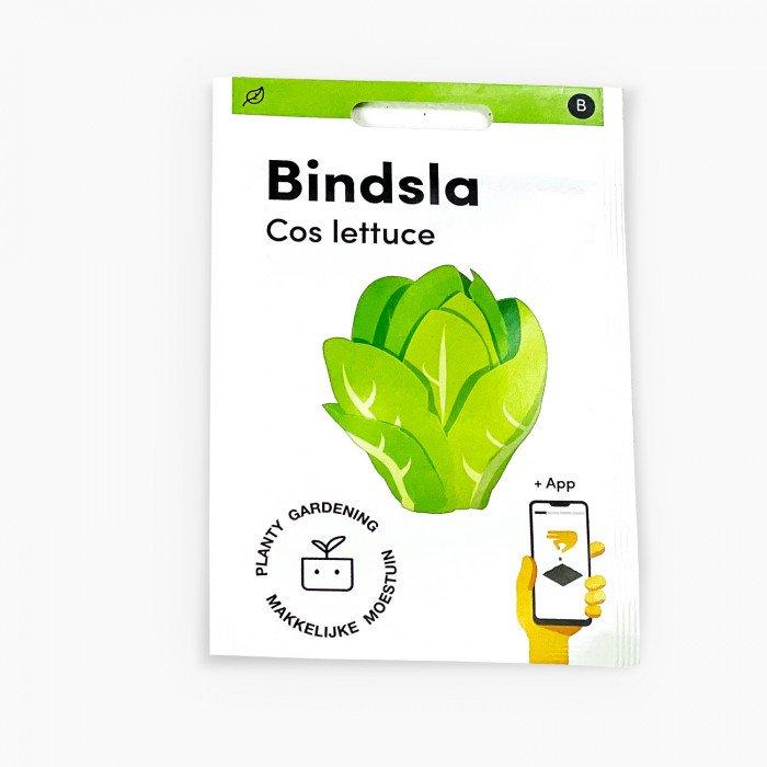 Bindsla