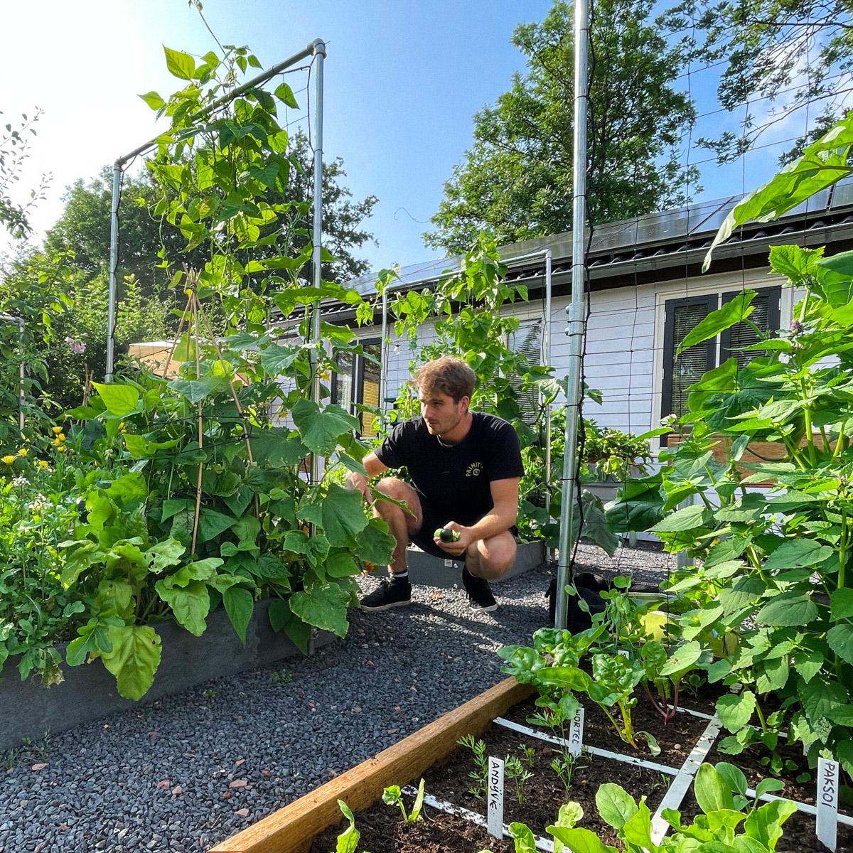 augustus-checken-tuin.jpg