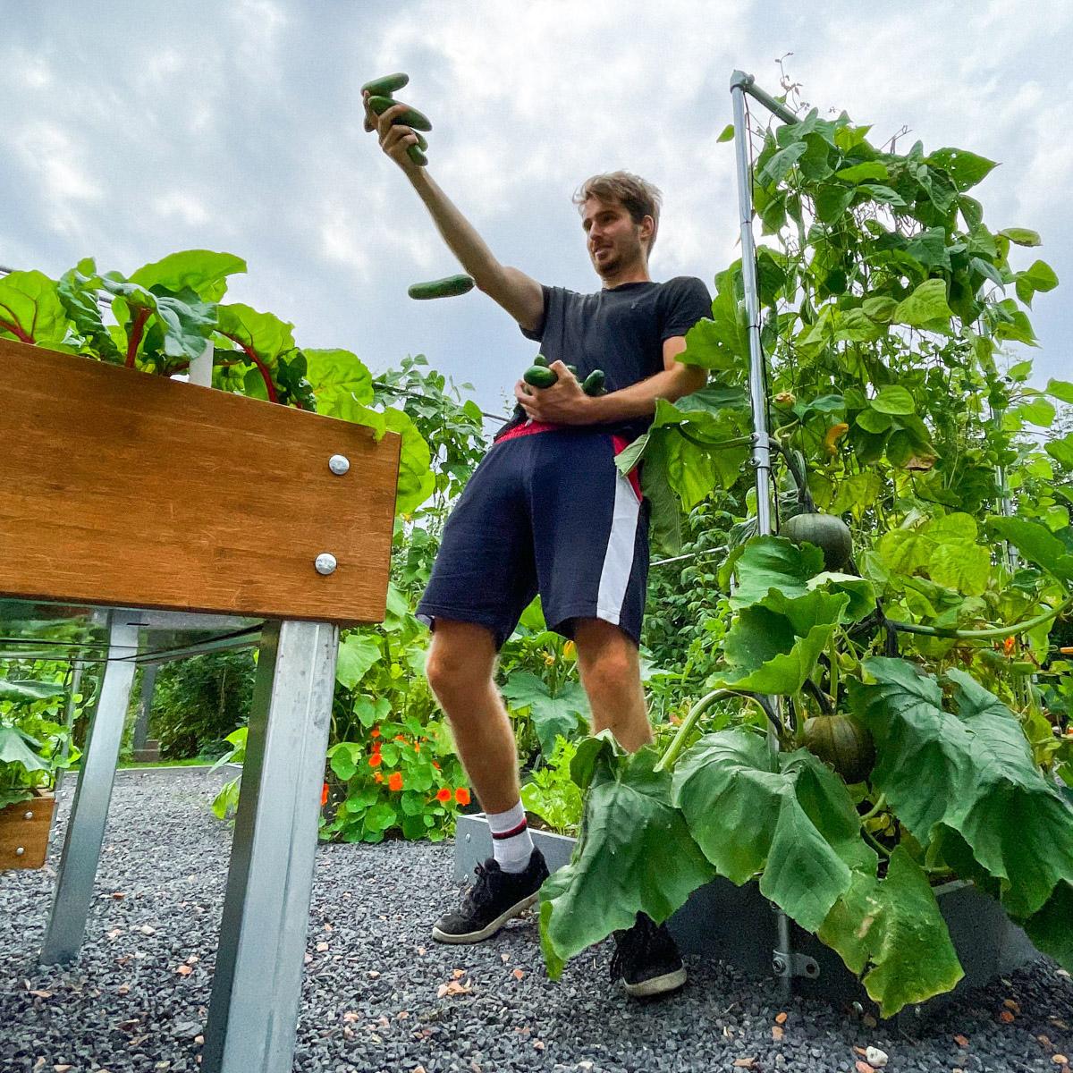 augustus-jelle-komkommers.jpg