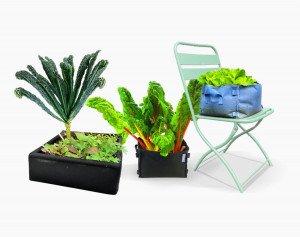 Handige, lichte growbags van gerecycled plastic. Als complete startpakketten met alles wat je nodig hebt.